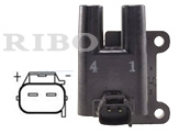 RB-IC8032G HYUNDAI, KIA  2 PINS